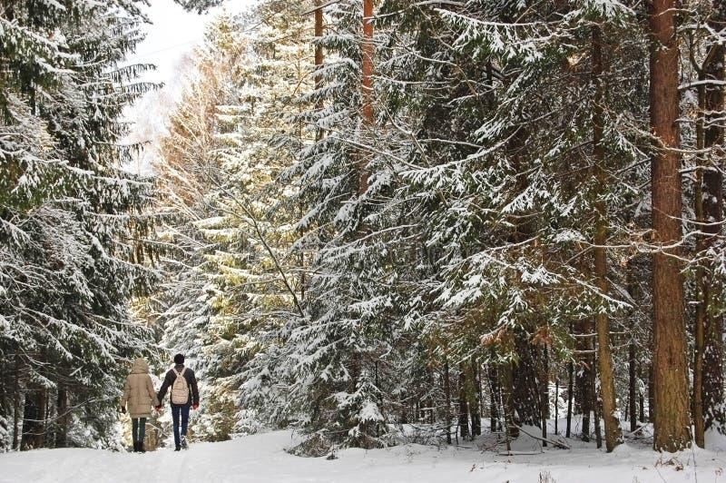 Jeunes beaux couples dans l'amour marchant ensemble en parc d'hiver images libres de droits