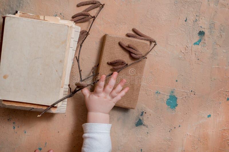 jeunes branches de bouleau et de livre sur le fond en bois blanc la belle vie de distillateur de ressort Orientation molle photos libres de droits