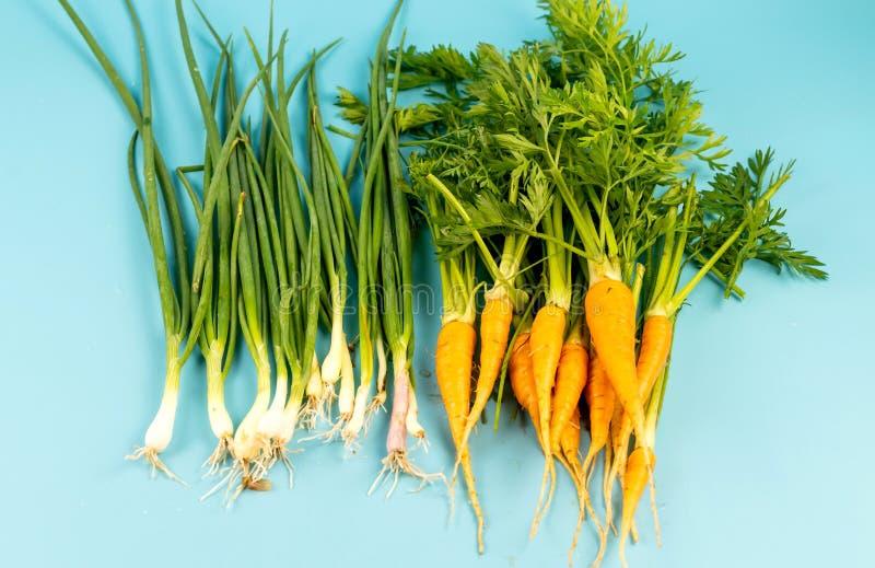 Jeunes carottes avec une tige verte et oignon sur un fond de turquoise photographie stock