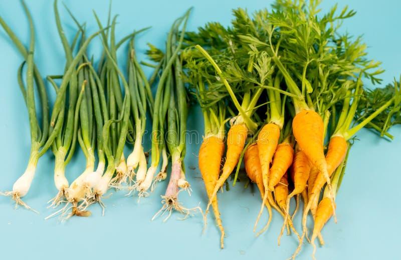 Jeunes carottes avec une tige verte et oignon sur un fond de turquoise photos stock