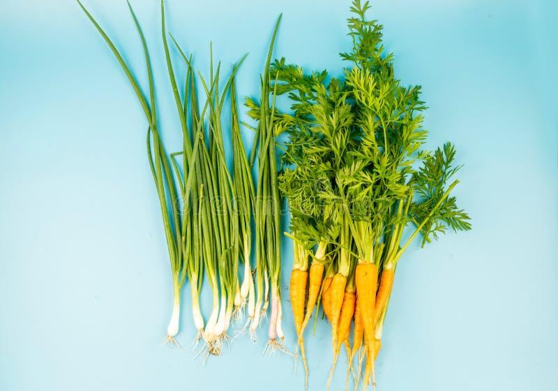 Jeunes carottes avec une tige verte et oignon sur un fond de turquoise photo libre de droits