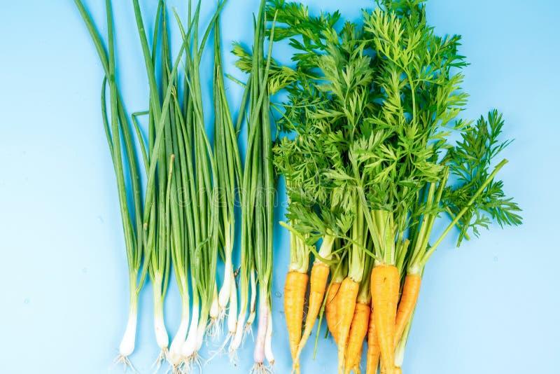 Jeunes carottes avec une tige verte et oignon sur un fond de turquoise photo stock