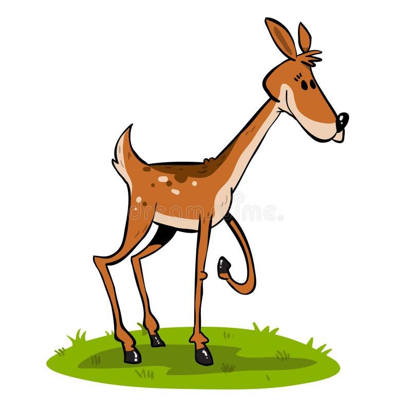 Jeunes cerfs communs bruns illustration libre de droits