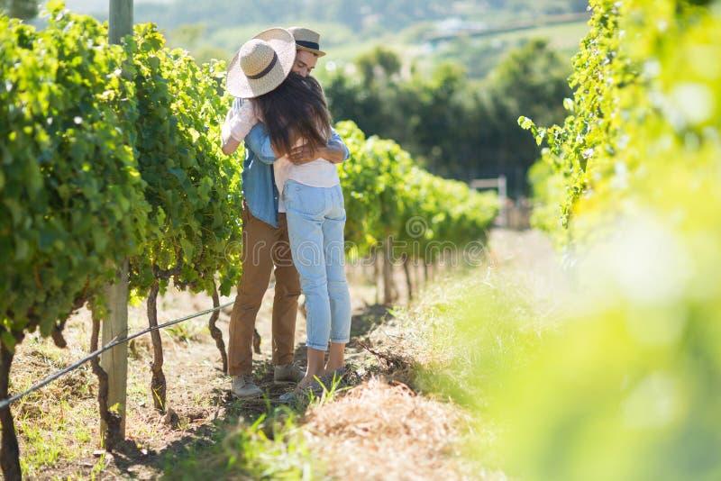 Jeunes couples étreignant au vignoble photo libre de droits