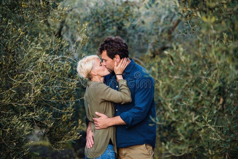 Jeunes couples affectueux se tenant dehors dans le verger olive, embrassant photos libres de droits