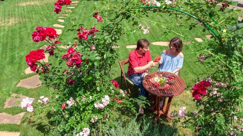 Jeunes couples appréciant la nourriture et le vin dans le beau jardin de roses à la date romantique, à la vue supérieure aérienne images libres de droits