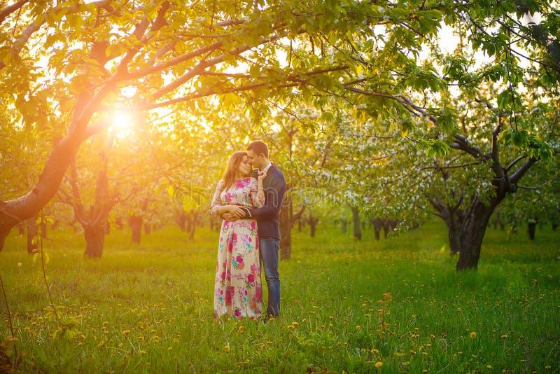 Jeunes couples au coucher du soleil dans un jardin de floraison photos stock