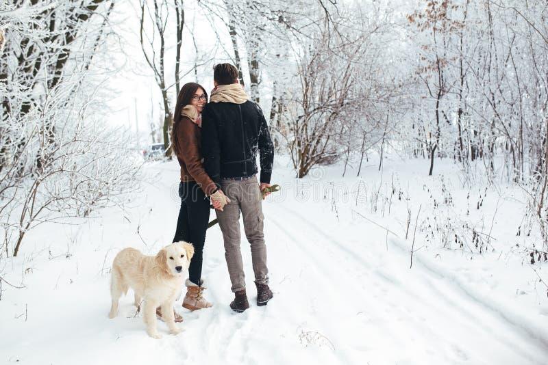 Jeunes couples dans l'amour marchant avec le chien image libre de droits