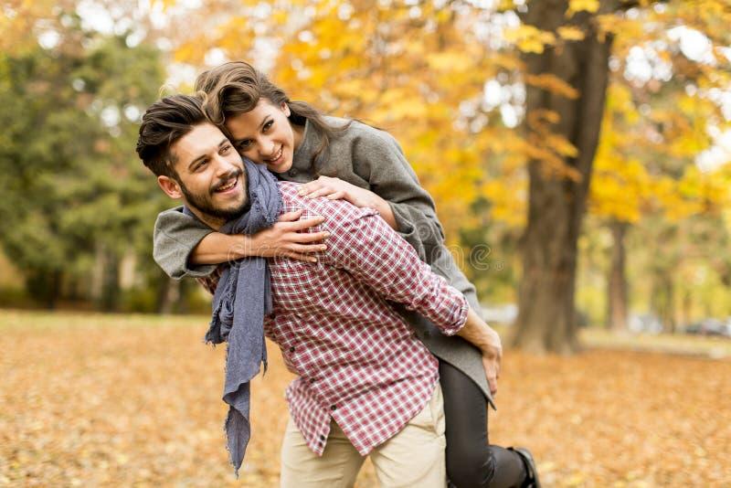 Jeunes couples dans la forêt d'automne images stock