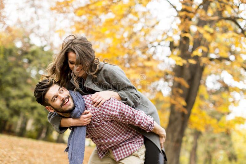 Jeunes couples dans la forêt d'automne photographie stock libre de droits