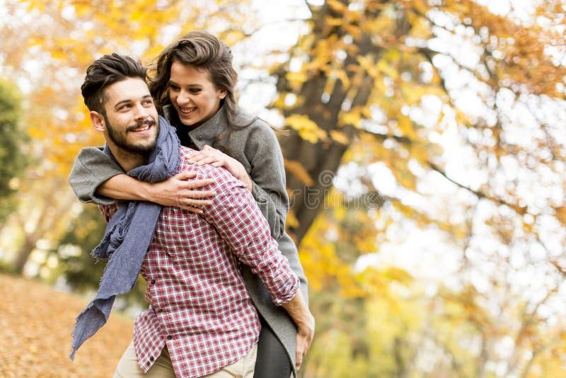 Jeunes couples dans la forêt d'automne photographie stock