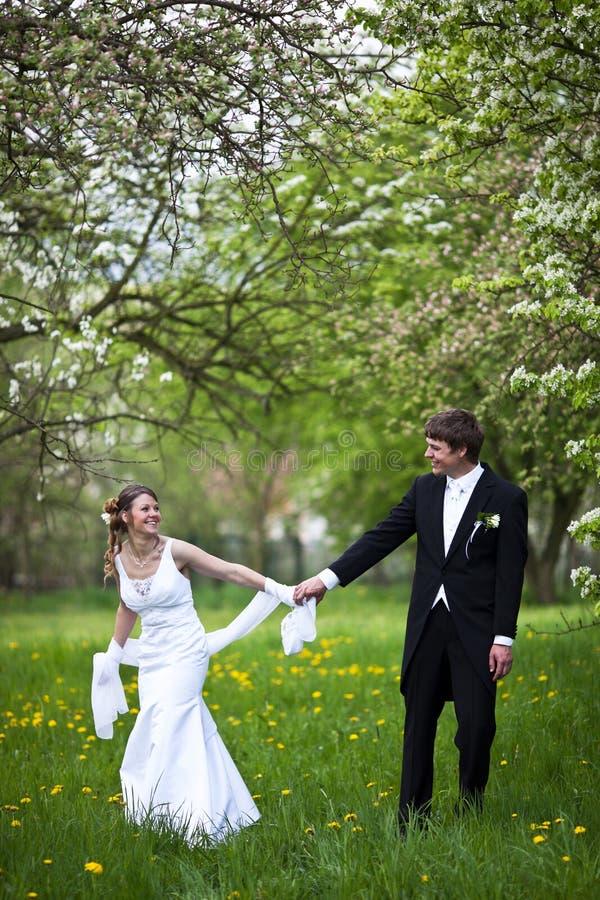 Jeunes couples de mariage photographie stock