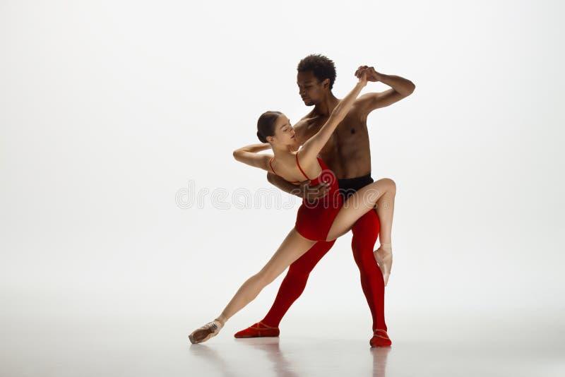 Jeunes couples gracieux des danseurs classiques dansant sur le fond blanc de studio images stock