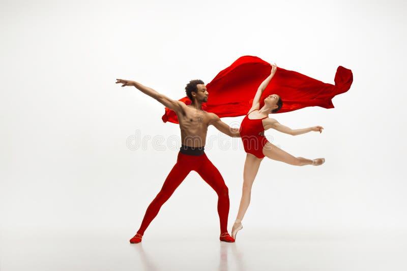 Jeunes couples gracieux des danseurs classiques dansant sur le fond blanc de studio photo libre de droits