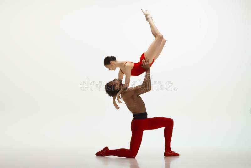 Jeunes couples gracieux des danseurs classiques dansant sur le fond blanc de studio photo stock