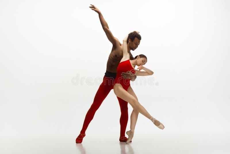 Jeunes couples gracieux des danseurs classiques dansant sur le fond blanc de studio image stock