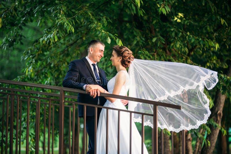 Jeunes couples, jeunes mariés marchant et appréciant leur jour du mariage soleil Été photo libre de droits