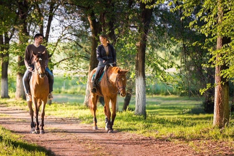 Jeunes couples montant un cheval photos libres de droits