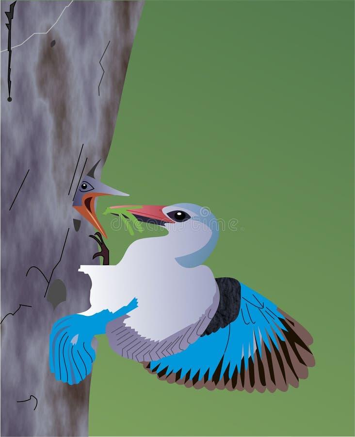 Jeunes de alimentation un d'oiseau bleu photo libre de droits