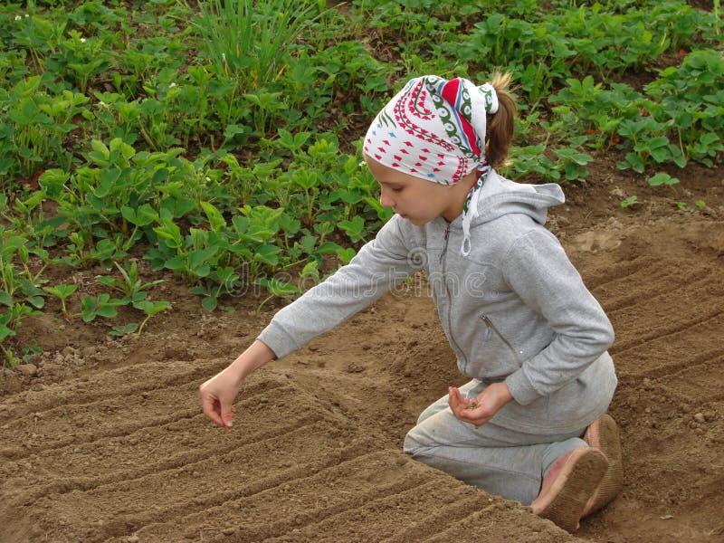 jeunes de fermier photographie stock libre de droits