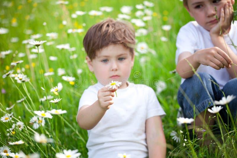 Jeunes enfants de mêmes parents dans le domaine photographie stock