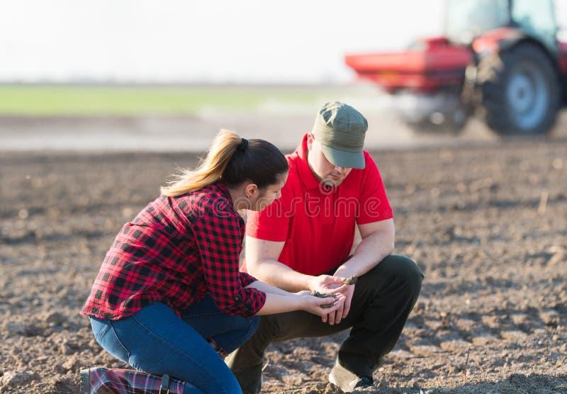 Jeunes exploitants agricoles examing les champs de blé plantés photographie stock