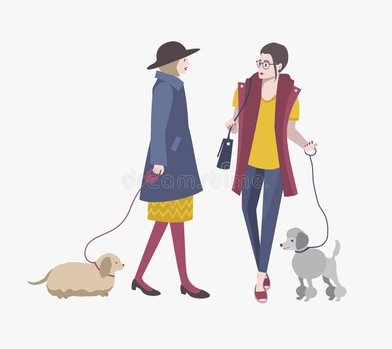Jeunes filles marchant avec des chiens, illustration plate colorée de vecteur illustration de vecteur
