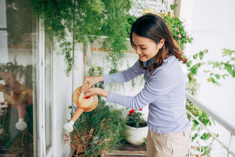 Jeunes fleurs asiatiques heureuses de Watering de femme au foyer de femme sur le balcon photographie stock libre de droits