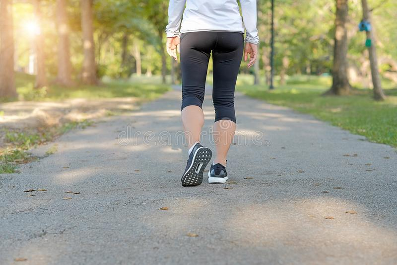 Jeunes jambes de femme de forme physique marchant en parc extérieur, coureur femelle fonctionnant sur la route dehors, pulser d'a image libre de droits