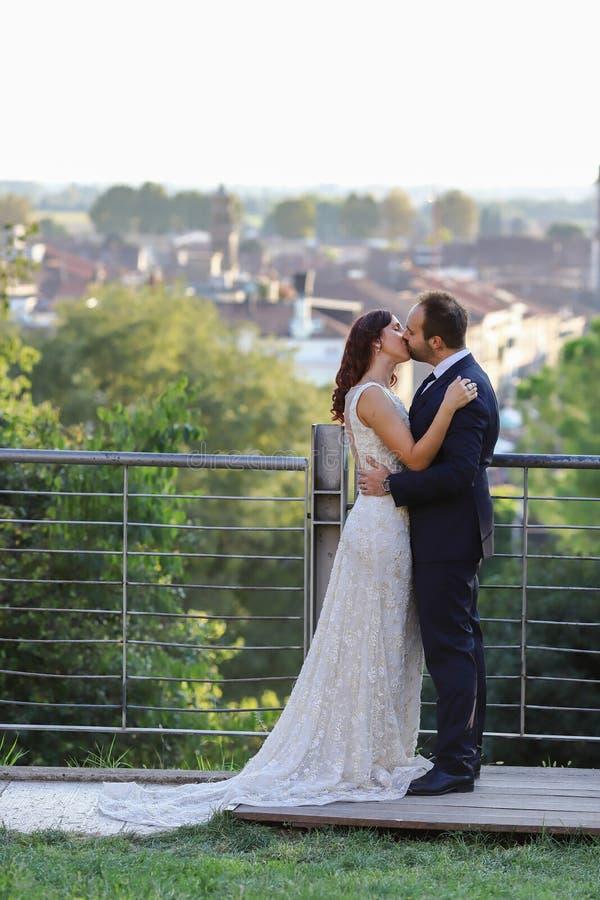 Jeunes mari?s ?l?gants ? un parc leur jour du mariage Belle histoire d'amour en nature, couple dans l'amour image stock