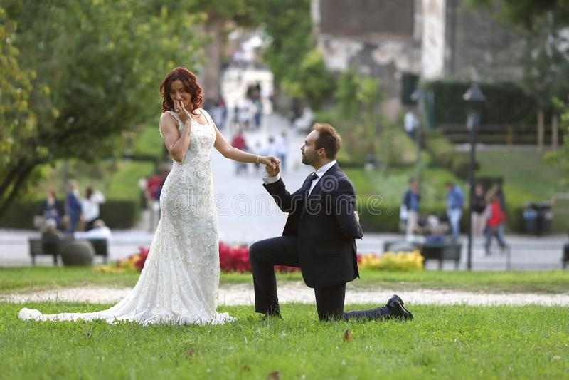 Jeunes mari?s ?l?gants ? un parc leur jour du mariage Belle histoire d'amour en nature, couple dans l'amour photos libres de droits
