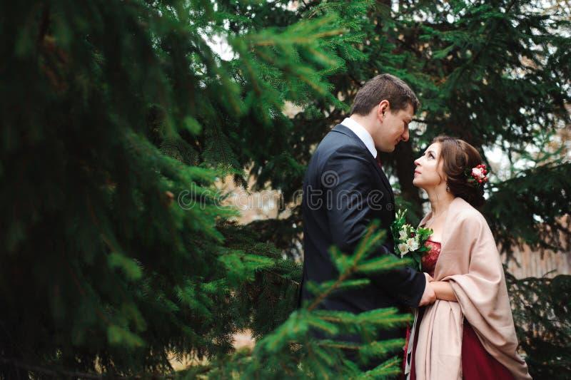 Jeunes mariés étreignant dans une forêt dans la forêt d'automne, épousant la promenade images stock