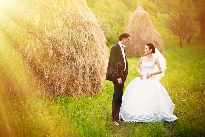 Jeunes mariés dans le domaine de foin photos stock