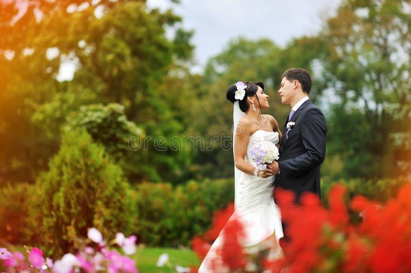 Jeunes mariés en parc vert images stock