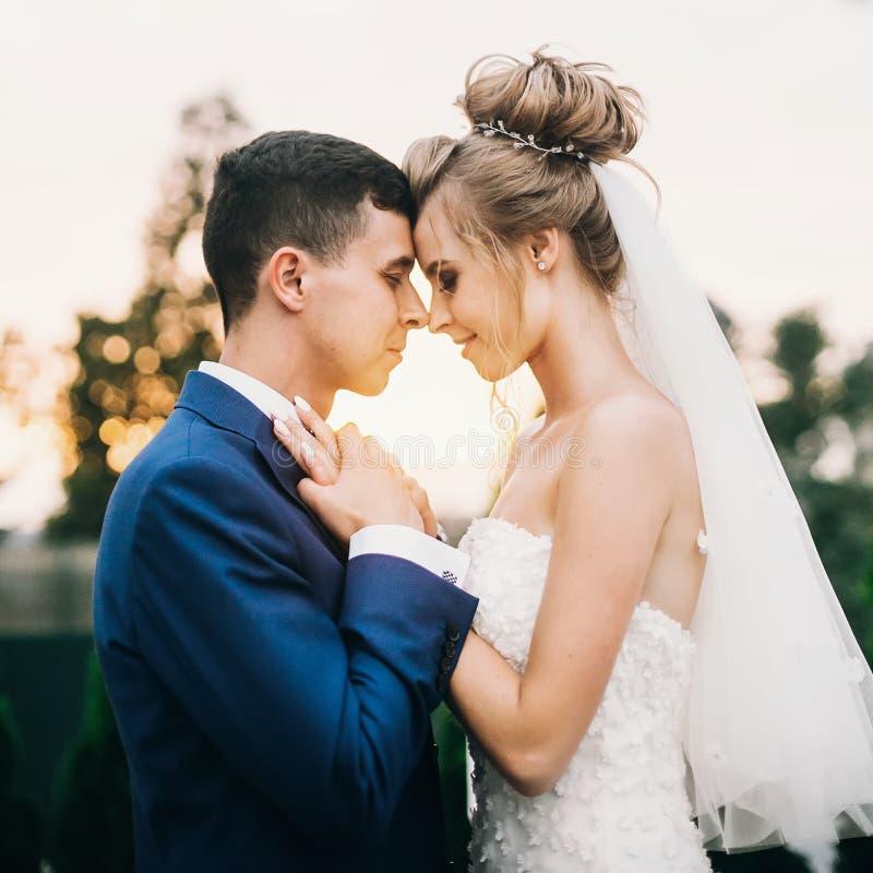 Jeunes mariés heureux élégants posant dans la lumière chaude de coucher du soleil à la réception de mariage dehors Couples les ép photo libre de droits