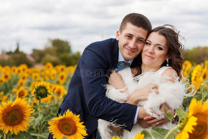 Jeunes mariés heureux dans un domaine des tournesols. photographie stock