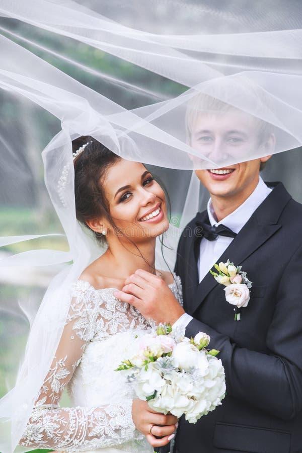 Jeunes mariés heureux en parc étreignant sous le voile Couples de mariage dans l'amour photos libres de droits