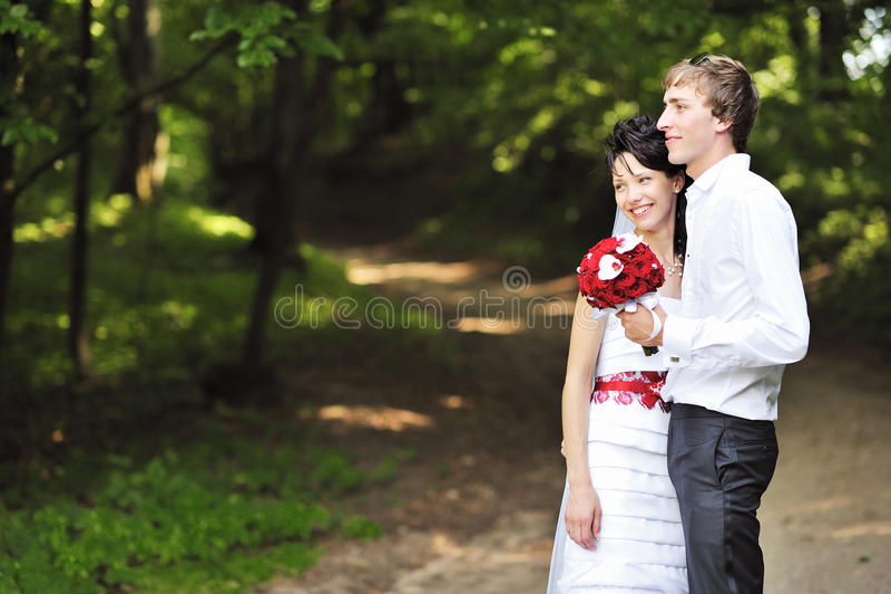Jeunes mariés heureux en stationnement images stock