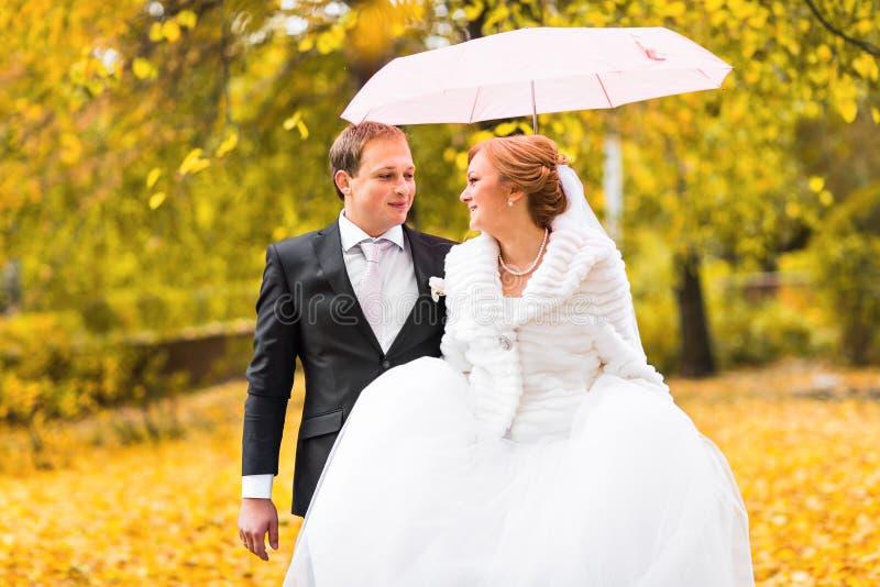 Download Jeunes Mariés Marchant En Parc D'automne Photo stock - Image du nuptials, hommes: 77160408