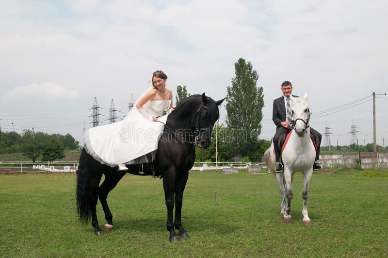 Jeunes mariés s'asseyant sur un cheval images libres de droits