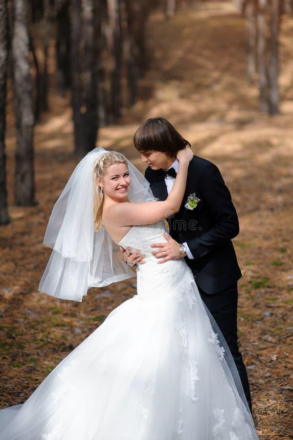 Jeunes mariés se tenant dans une forêt de pin photographie stock