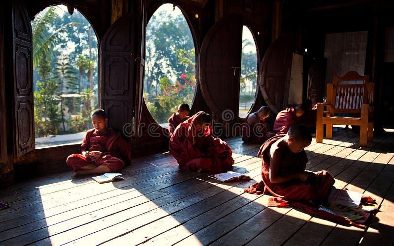 Jeunes moines apprenant dans le monastère Myanmar photos stock