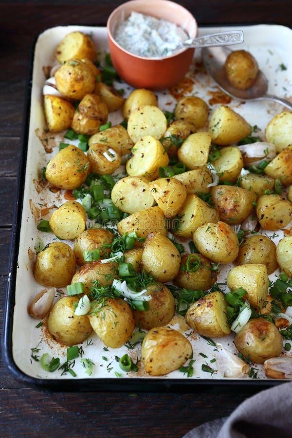 jeunes pommes de terre Four-cuites au four photo stock