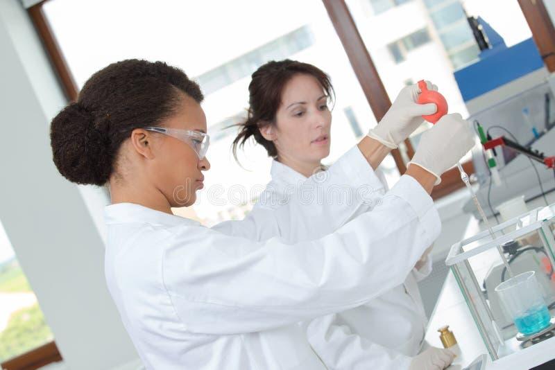 Jeunes scientifiques féminins concentrés photos stock