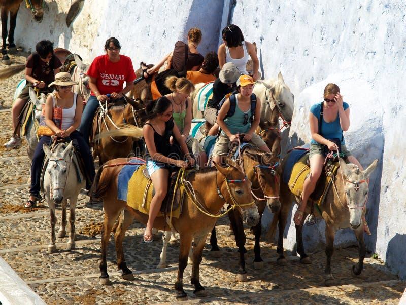 Jeunes touristes sur des mules, Santorini images stock