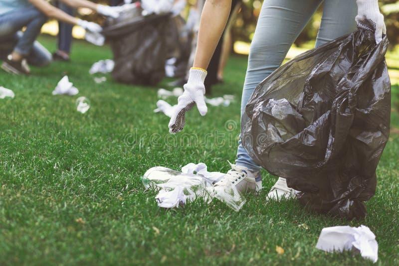Jeunes volontaires rassemblant des déchets en parc de suumer images stock