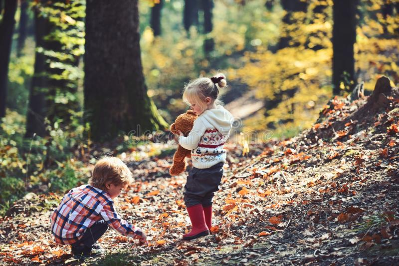 Jeux actifs de jeu d'enfants sur l'air frais dans le repos actif de forêt d'automne et l'activité d'enfants extérieurs photographie stock libre de droits