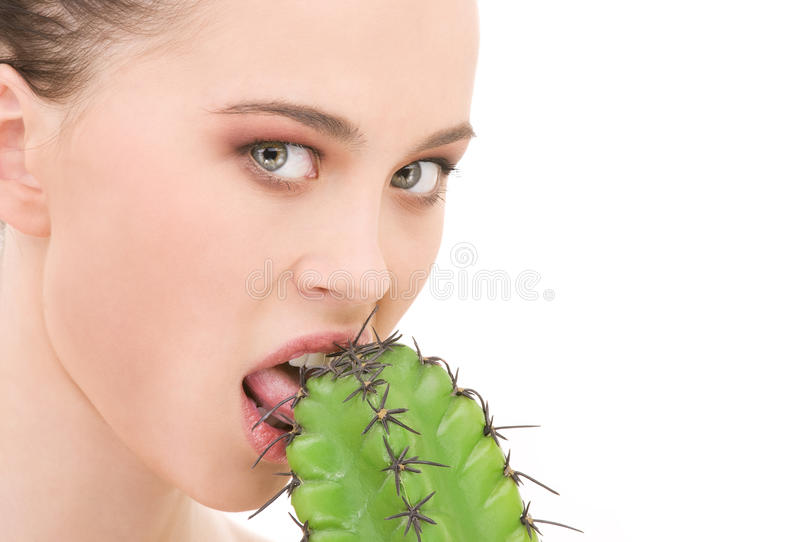 Jeux de cactus photo stock