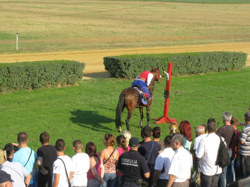 Jeux de cavalier de Ljubicevo photos stock