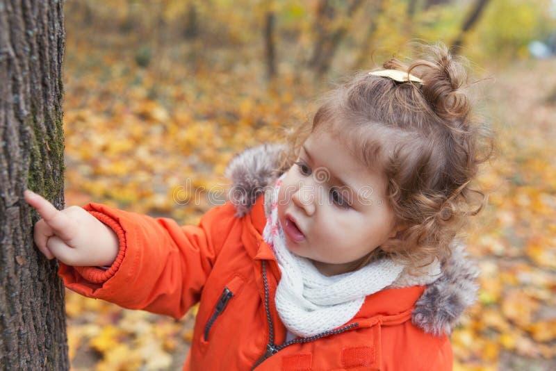Jeux de plein air d'automne image stock